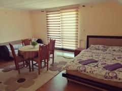 Apartmani Proleće - apartmani u Josanickoj Banji